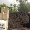 Zoo Brew Compost